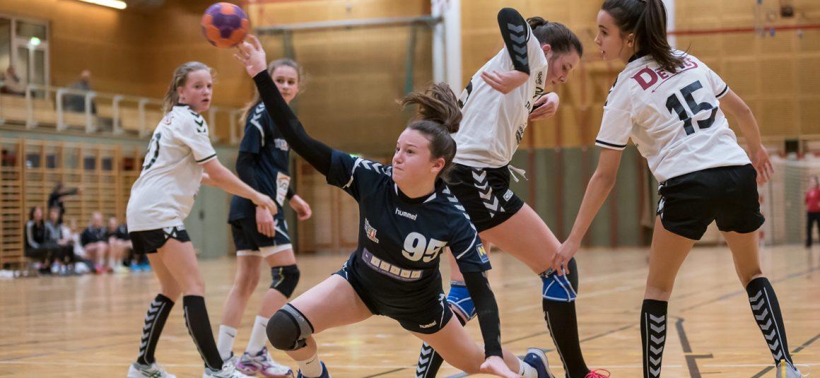 Tolles Spiel der U14 gegen Perchtoldsdorf