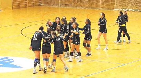WHA  Auswärtssieg gegen Perchtoldsdorf/Vöslau erkämpft